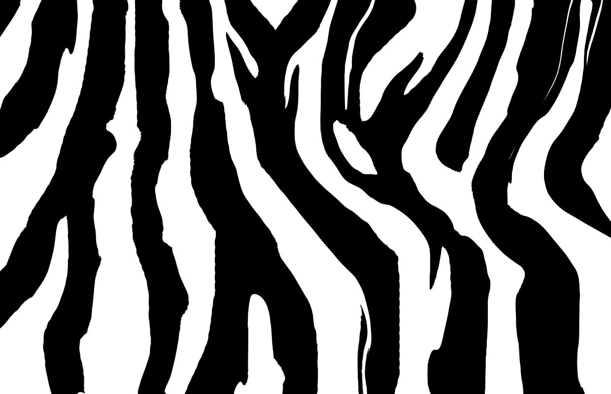 Tiger Stripe Pattern Images amp Pictures Becuo